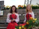 Wenn die Musi spielt - Sommer Open Air 2012
