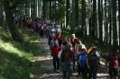 Krone-Fanwanderung am 19.09.2009
