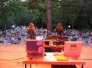 Sommernachtsfest in Bad Füssing