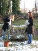 S&M planzen ihre erste eigene Rose auf der Roseninsel in Lübben im Spreewald